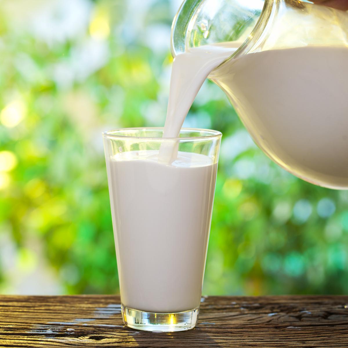 Intolerância à lactose ou APLV: Entenda a diferença