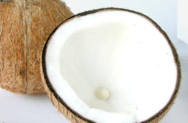 10 benefícios do coco para os bebês