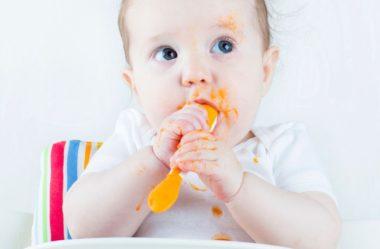 33 Receitas de papinhas para bebês (Passo a passo)