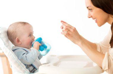 Papinhas para bebês de 6 meses: Por onde devo começar?